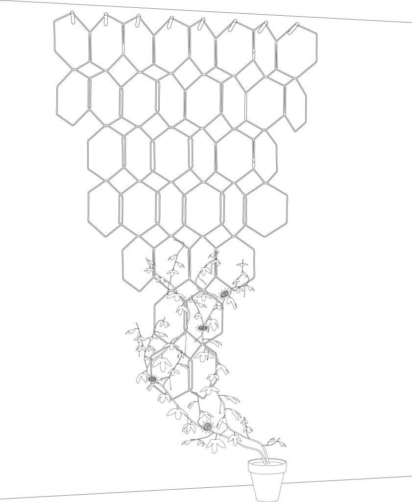 ANNO-hexagone
